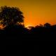 A sundowner in central Botswana